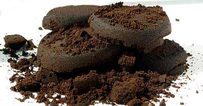 posos de café fertilizantes ecológico