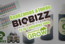 BioBizz abonos recomendados