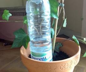 como regar plantas en vacaciones con botella de plástico
