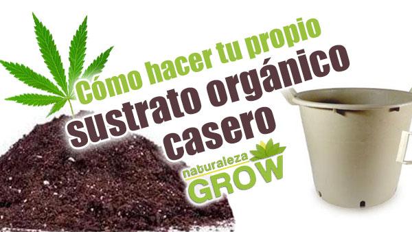 Todo sobre fertilizantes para marihuana - Naturaleza Blog