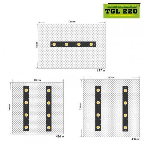 Distribucion armario TGL 220