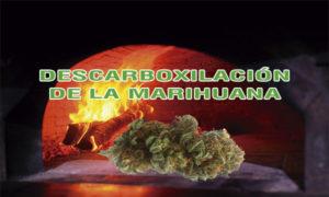 descarboxilar la marihuana