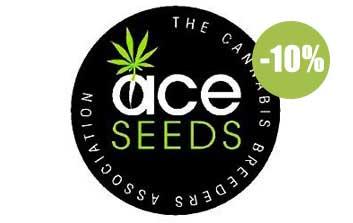 ace seeds regulares