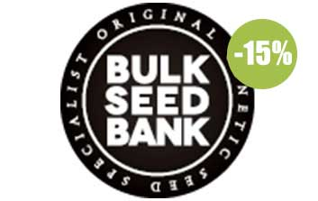 bulk seeds autofloreceintes