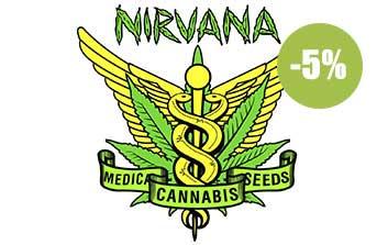 nirvana seeds regulares