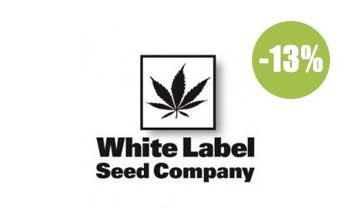 sensi white label seeds regulares